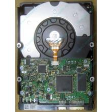 HDD Sun 500G 500Gb в Абакане, FRU 540-7889-01 в Абакане, BASE 390-0383-04 в Абакане, AssyID 0069FMT-1010 в Абакане, HUA7250SBSUN500G (Абакан)