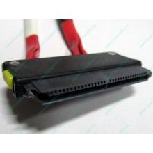 SATA-кабель для корзины HDD HP 451782-001 459190-001 для HP ML310 G5 (Абакан)